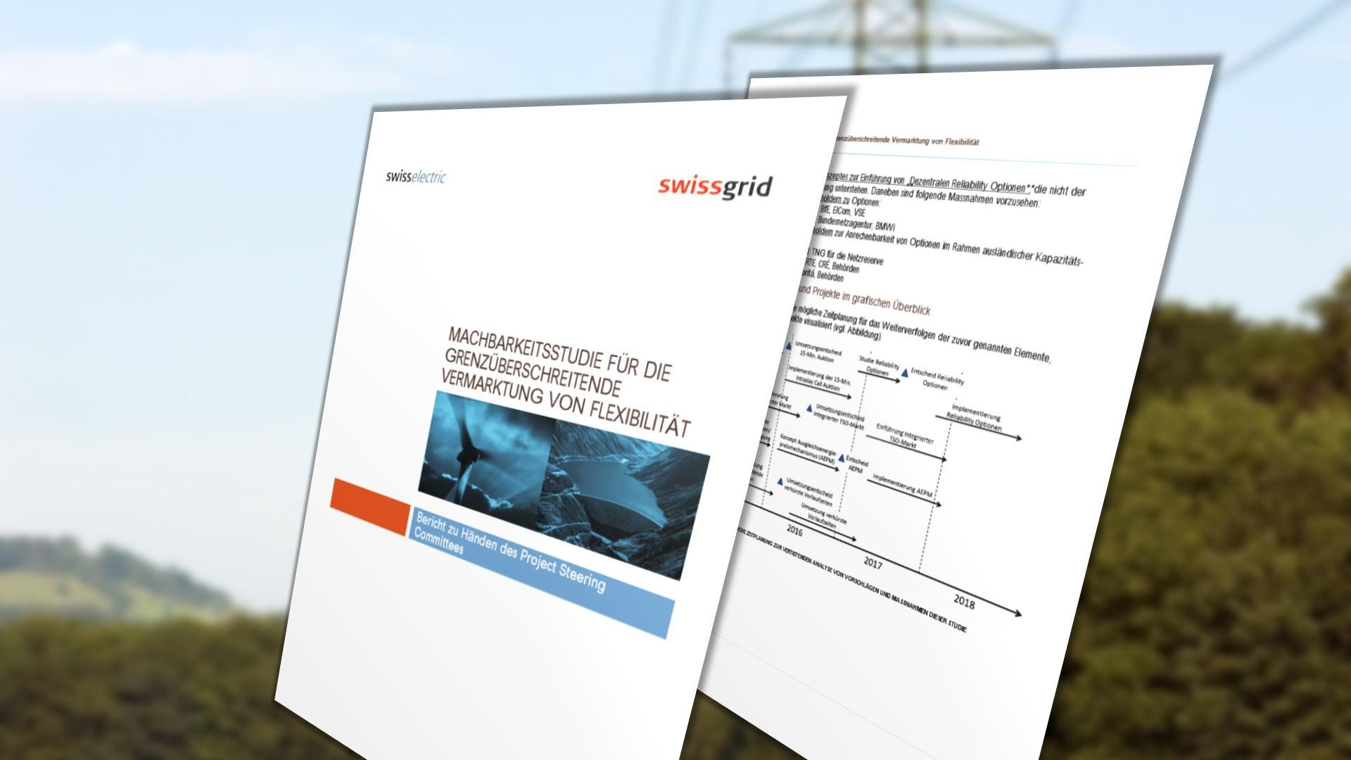 Swiss study on transborder market design